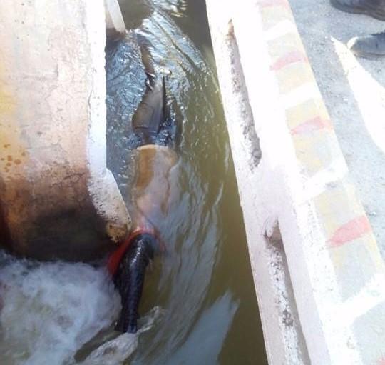 Encuentran a torreonense muerto en canal de riego en Madero